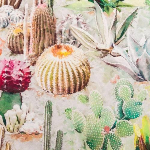 Velours picas cactus