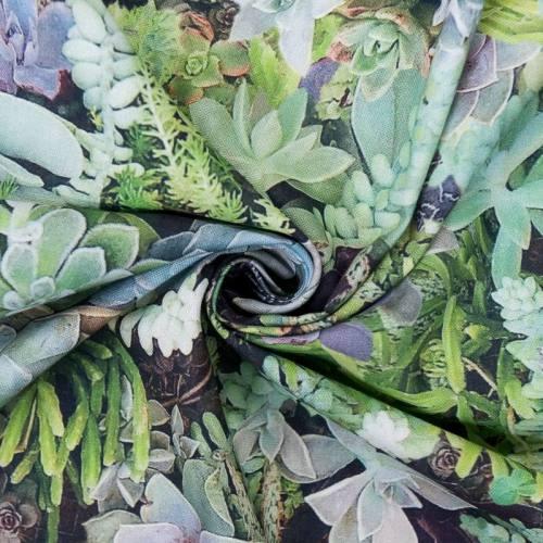 Coton impression numérique motif succulentes