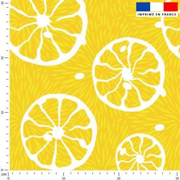 Rondelle de citron - Fond jaune