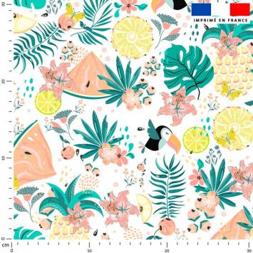 Toucan et pastèque tropicale - Fond écru