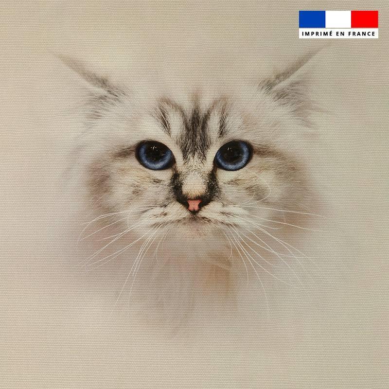 Coupon 45x45 cm écru motif chat Ragdoll