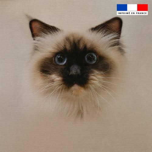 Coupon 45x45 cm motif chat Sacré de Birmanie