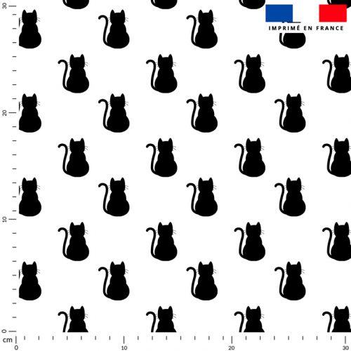 Chat noir assis - Fond blanc