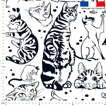Chats tigrés - Fond blanc - Création Pilar Berrio
