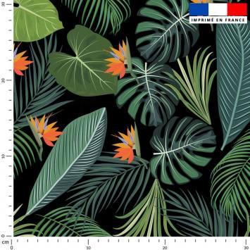 coupon - Coupon 460cm - Jungle et oiseau du paradis - Fond noir - Burlington 170 gr/m² - 150 cm