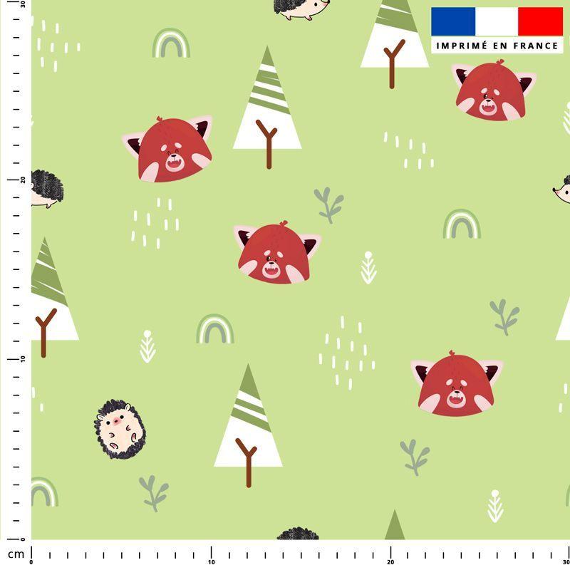 Panda roux et arc-en-ciel - Fond vert