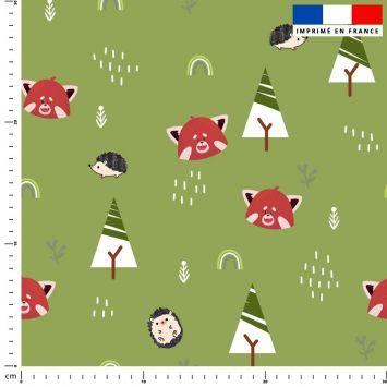 Panda roux et arc-en-ciel - Fond vert kaki