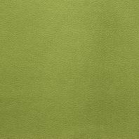 Velours aspect simili cuir vert