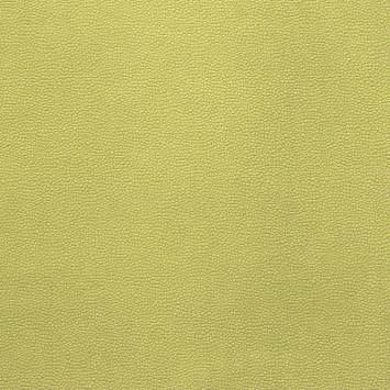 Velours aspect simili cuir vert pistache