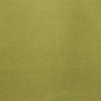Velours aspect simili cuir anis