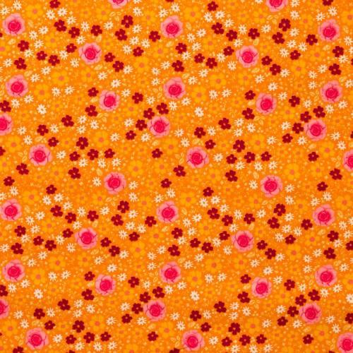 Coton anisley orange