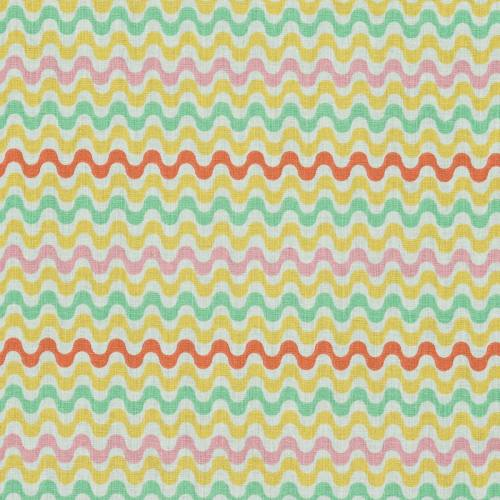 Coton tulio multicolore
