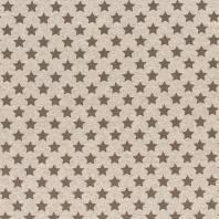 Tissu molleton French Terry chiné beige imprimé étoiles